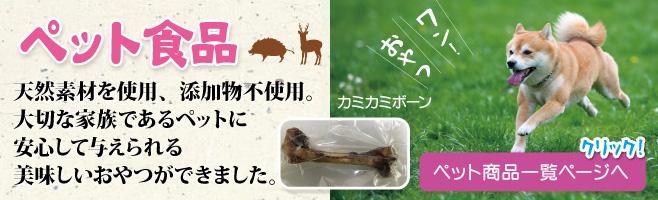 iwata01
